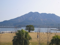 200812_003_11